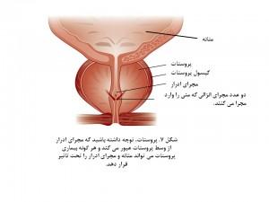 Mens Health-fig 7
