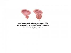 Mens Health-fig 8